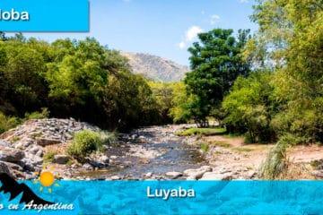 Luyaba